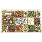 Bead Extravaganza Bead Box Kit 21-1/2 oz.-pack