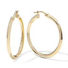 Technibond® High Polish Hoop Earrings