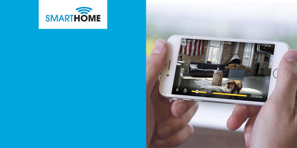 Smart Home Security, Person Using An IPhone To Look At The Inside Of His  Home