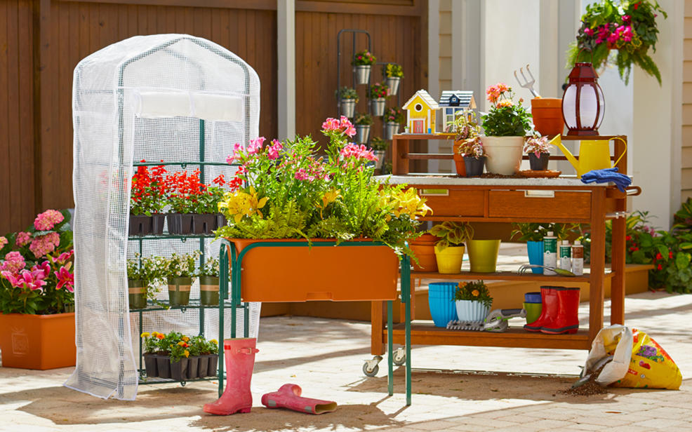 lots of different flowering plants on tables and and racks near gardening tools