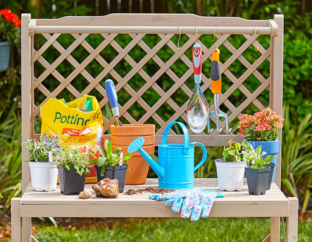 potted plants and gardening tools