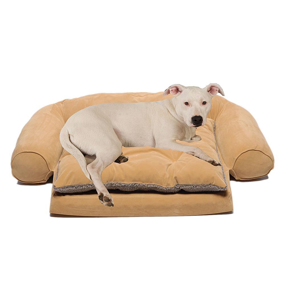 Carolina Pet Company Medium Sleeper Comfort Couch with Removable Cushion