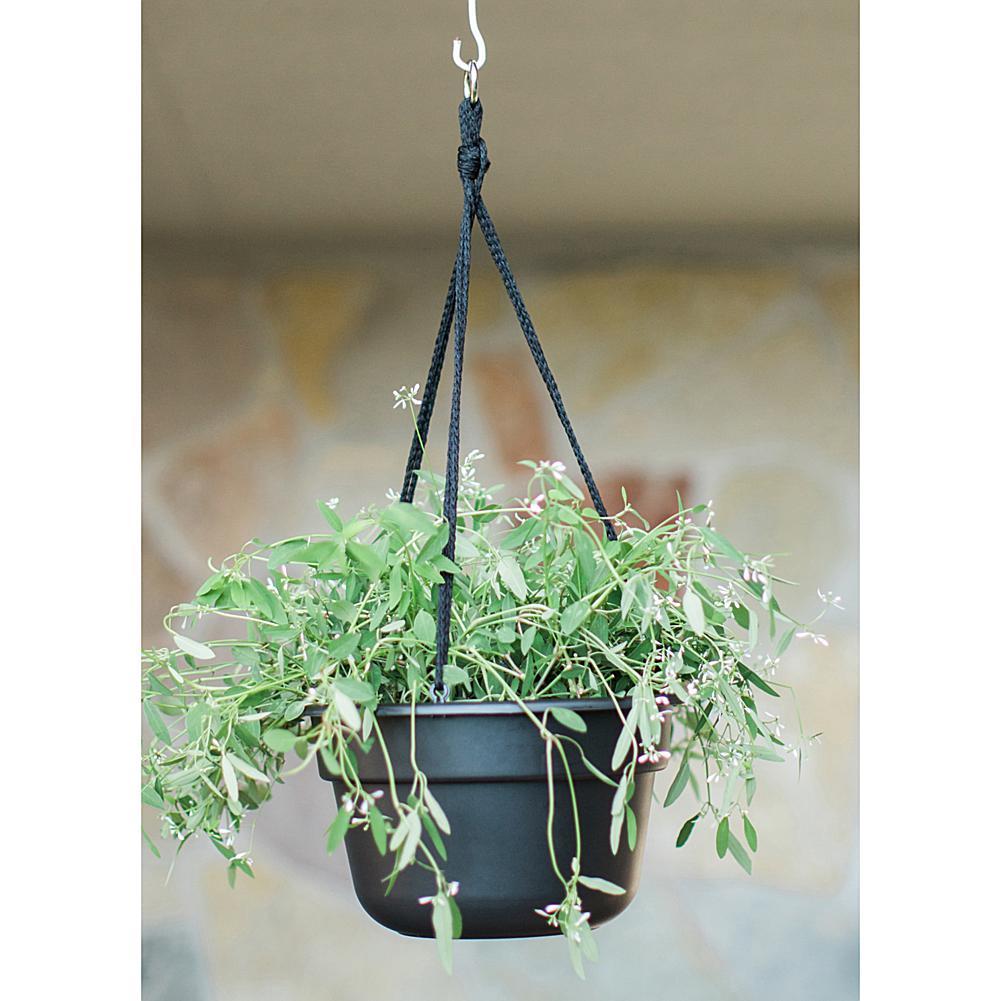 Bloem Dura Cotta Hanging Basket 12 in