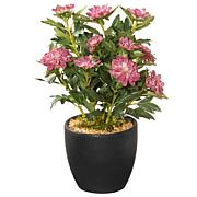 """11"""" Artificial Potted Zinnia Flowers"""