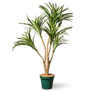 3' Artificial Potted Dracaena Plant