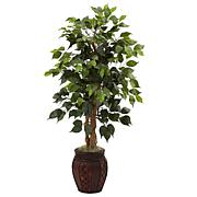 44 in. Ficus Tree with Decorative Planter
