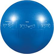 GoFit 55cm Pro Professional Stability Ball and DVD