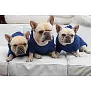 Isabella Cane Royal Blue Dog Sweater with Hoodie