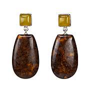 Jay King Confetti and Green Reef Opal Drop Sterling Silver Earrings