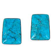 Jay King Sterling Silver Spider Mountain Turquoise Earrings