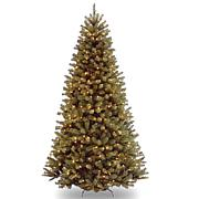 National Tree North Valley Spruce 6.5'T Hinged Tree w 450 Clear Lights