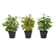 Pure Garden 3-Piece Life-like Potted Faux Foliage Arrangement