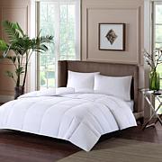 Sleep Philosophy 100% Cotton Sateen Double Insertion Comforter