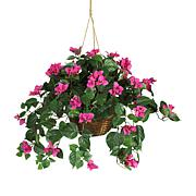South Street Loft Bougainvillea Hanging Basket
