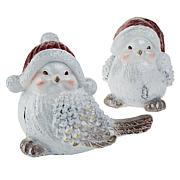Wind and Weather Set of 2 Holiday Bird Accents