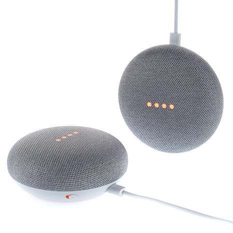 2-pack Google Home Mini Voice Activated Smart Assistants with 2 Vouchers  for Pandora Premium and Daily Burn Services