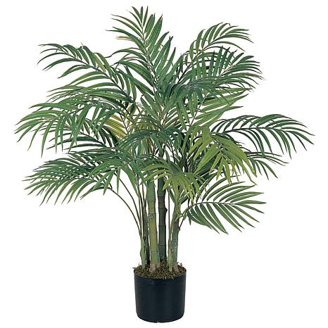 3' Areca Palm 7 Trunk Tree with 536 Leaves