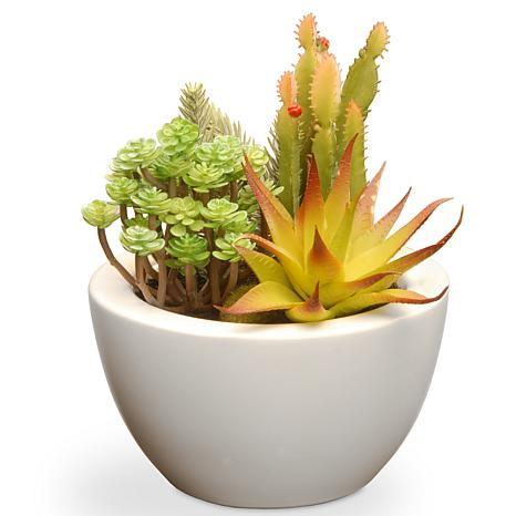 """7.5"""" Artificial Succulent Plants"""