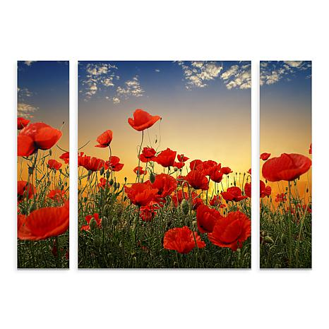 "Albena Markova ""Poppies"" Multi-Panel Art - 24"" x 32"""