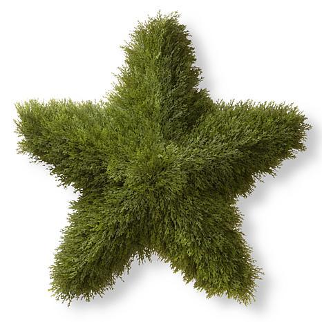 """Artificial Topiary 36"""" Juniper Star"""