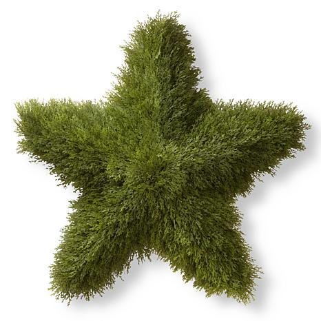 "Artificial Topiary 36"" Juniper Star"