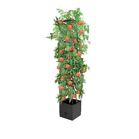 Flat Pack Self Watering Fruit & Veggie Tower