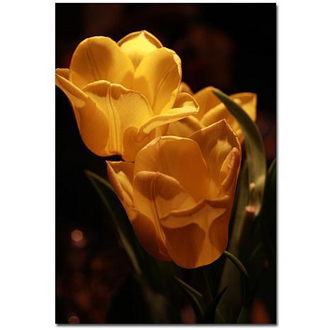 "Giclee Print - Two Yellow Tulips 22"" x 32"""