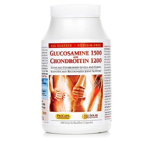 Glucosamine and Chondroitin-480 Caps