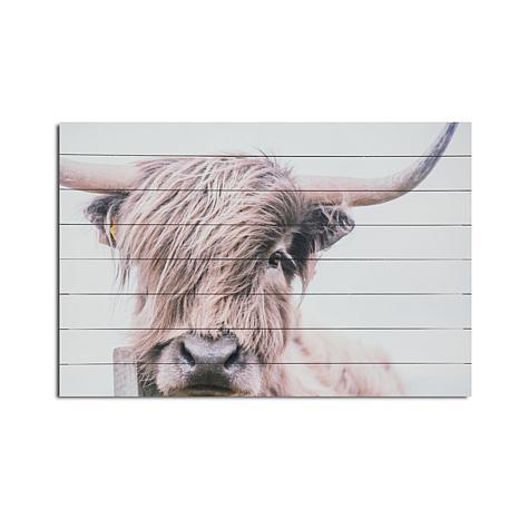 Highland Cow 24x36 Print On Wood 9119766 Hsn