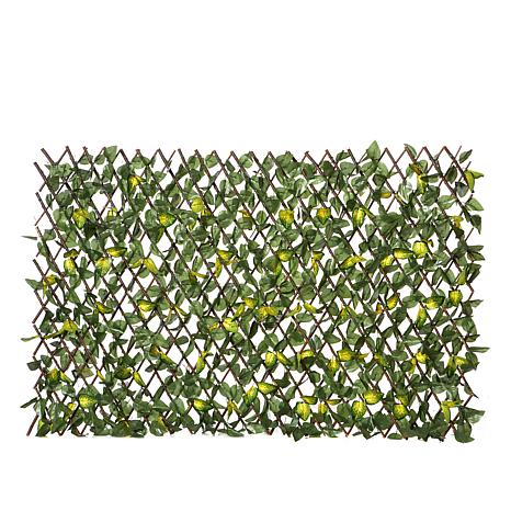 Improvements Expandable Fence with Leaves
