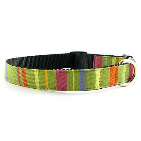Isabella Cane Abbington Dog Collar - Lime Medium