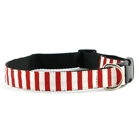 Isabella Cane Candy Cane Stripe Dog Collar - Large