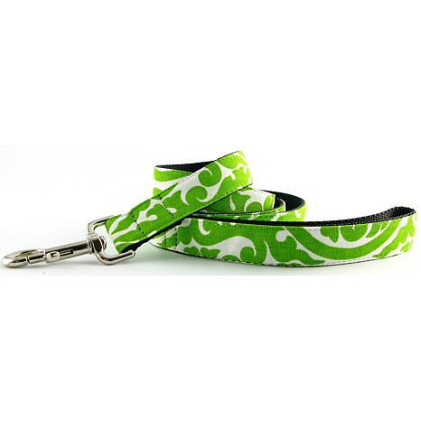 Isabella Cane Dog Leash - Green 5ft N