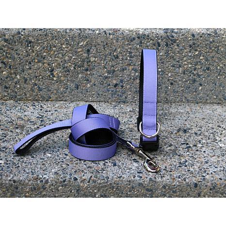 Isabella Cane Large Lilac Collar-Leash Set