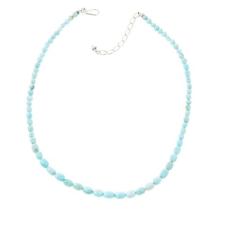 "Jay King Blue Aragonite Nugget 20"" Necklace"