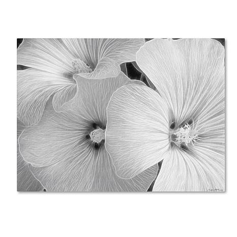 "Kathie McCurdy ""Sheer Malva"" Canvas Art"