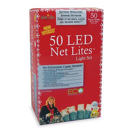 Micro Led Net Lights 50 In Warm White 6611962 Hsn