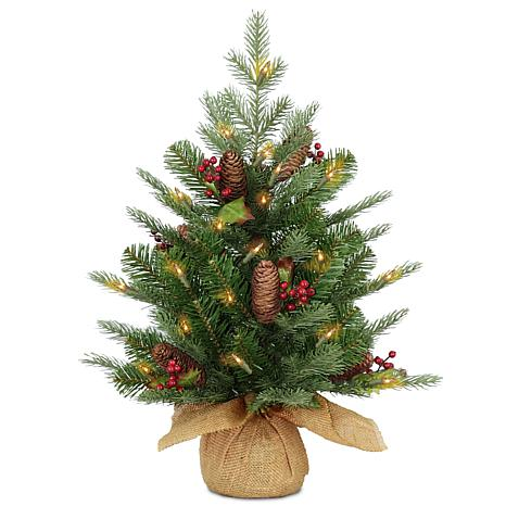 National Tree 2' Feel Real® Nordic Spruce Tree in Burlap w 50 LEDs