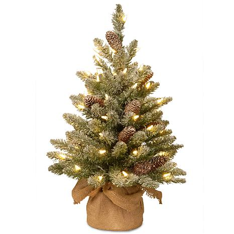 National Tree 2' Snowy Concolor Fir Small Tree in Burlap w/ 50 LEDs