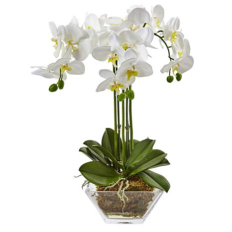 """Nearly Natural 22"""" Phalaenopsis in Glass Vase"""