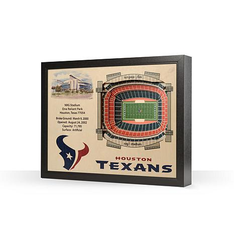 Officially Licensed NFL Houston Texans StadiumView 3D Wall Art