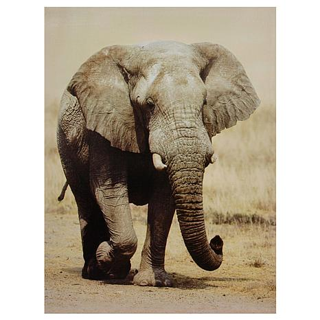 Oriental Furniture Walking Elephant Canvas Wall Art