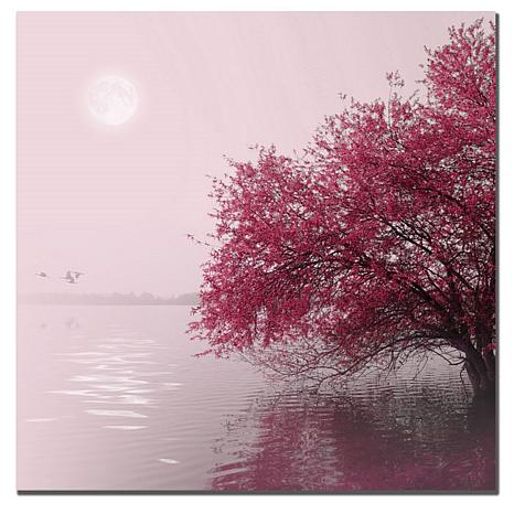 "Philippe Sainte-Laudy Medium ""Full Moon on the Lake"""