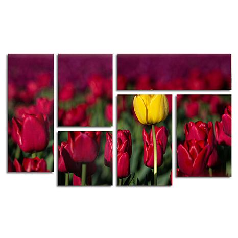 """Pierre Leclerc """"Yellow Tulip"""" Art Collection - Set of 6"""