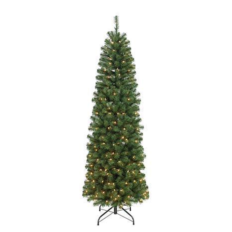 Noble Fir Christmas Tree.Puleo 7 5 Ft Noble Fir Artificial Christmas Tree W 350 Clear Lights
