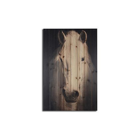 White Horse on Black Background 24x36 Print on Wood