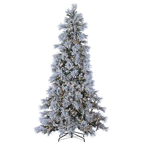 Winter Lane 9' LED Lighted Flocked Snowbell Pine Tree