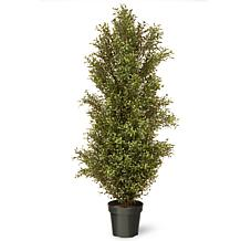 5' Artificial Topiary Argentea Plant