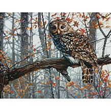 """Dimensions Counted Cross Stitch Kit 14"""" x 11""""- Wise Owl (14 Count)"""