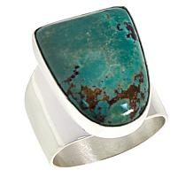Jay King Sterling Silver Freeform Gemstone Ring